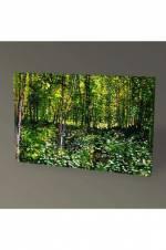 Vincent Van Gogh Ağaçlar Tablo - 75X50